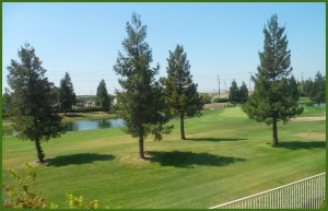 The Retreat Golf Course View - Elk Grove